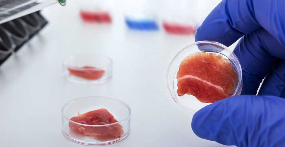 Lab-Grown-Meat
