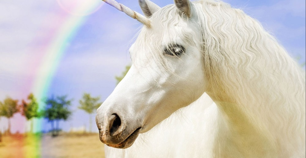 internet unicorns